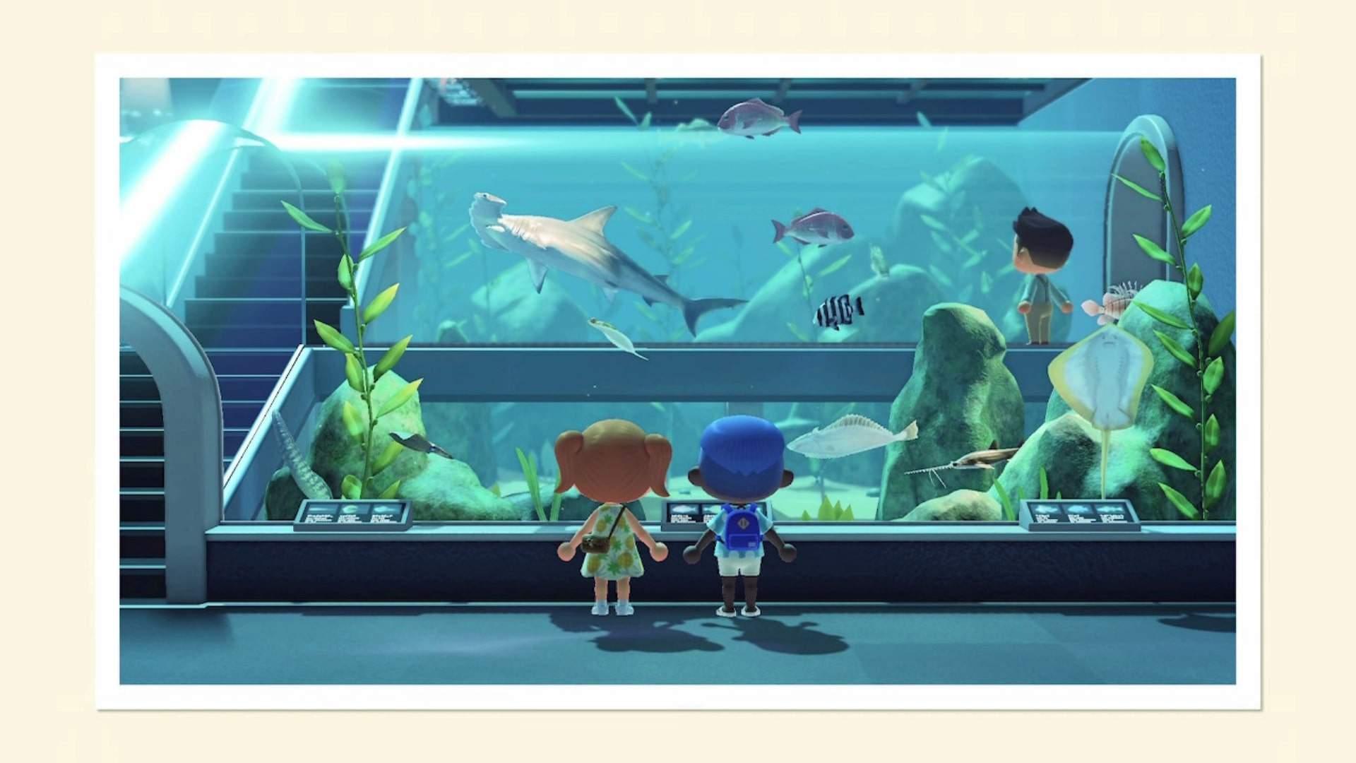 New Horizons - Museum Aquarium