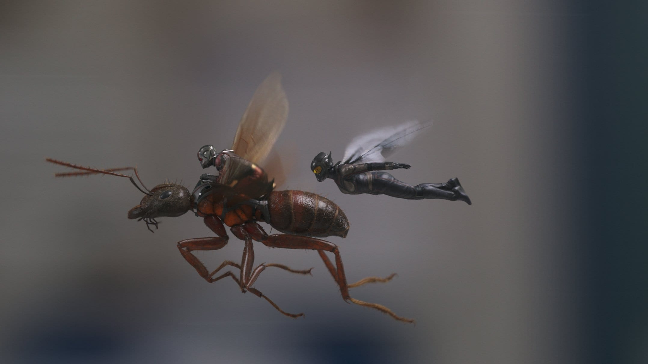Marvel Studios ANT-MAN AND THE WASP..L to R: Ant-Man/Scott Lang (Paul Rudd) and The Wasp/Hope van Dyne (Evangeline Lilly)..Photo: Film Frame..©Marvel Studios 2018